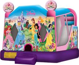 Disney Princess - $220 Local Half Day Hire